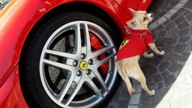 Ferrari al Duca d'Este, passione rossa