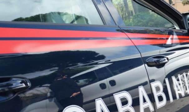 Marocchino rapina due persone con pitbull e dopo lo aizza contro i Carabinieri. Ferite più persone, spray e colpi di pistola