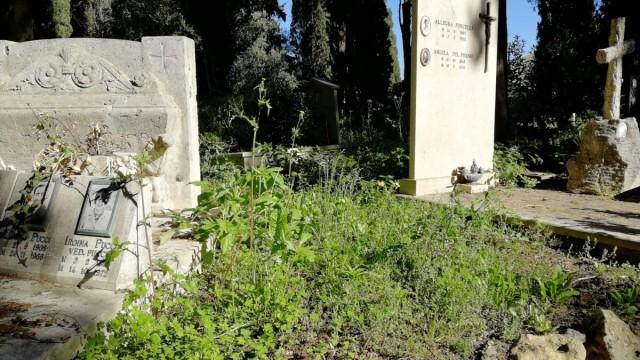 Ottava giornata senza contagi a Tivoli. Verso la riapertura il cimitero