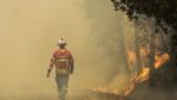 """Roma e provincia, AssoTutela: """"Allarme incendi e pochi pompieri"""""""