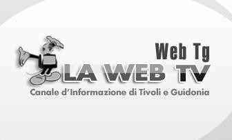 Web Tg – 15 Gennaio 2010